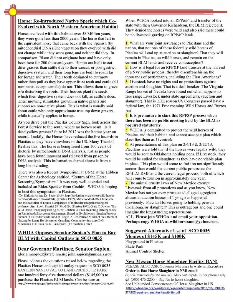 WHOANewsletter_Mar2013_Page_2
